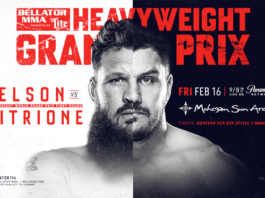 Roy Nelson vs. Matt Mitrione II headlines Bellator 194