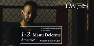 Manu Delerme