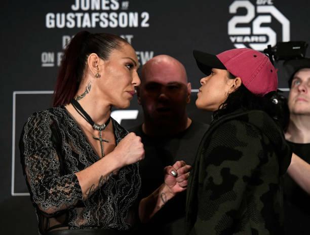 Amanda Nunes UFC 232