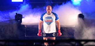 Top Heavyweights - Fedor Emelianenko Bellator Superfight Championship