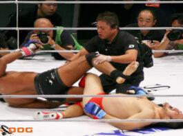 Pro Wrestlers In MMA