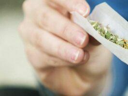 CBD Joints
