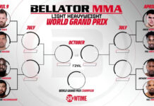 Bellator light heavyweight