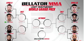 Bellator light heavyweight