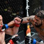 UFC Vegas 22